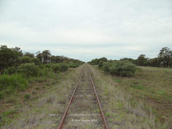 Old train line at Glenmorgan