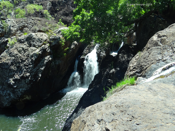 Little Millstream Falls, FNQ