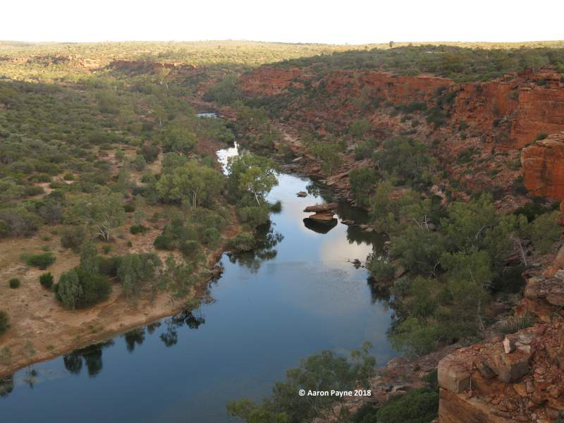 Murchison River at Kalbarri National Park