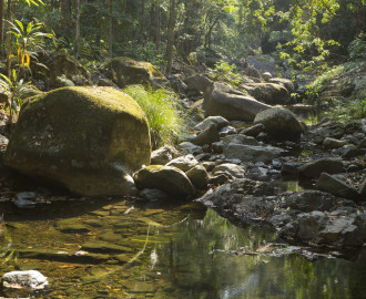 Kilcoy Creek (east branch)