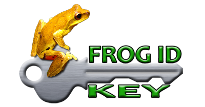 frog ID key, Sunshine Coast, Brisbane, Gold Coast, SE QLD